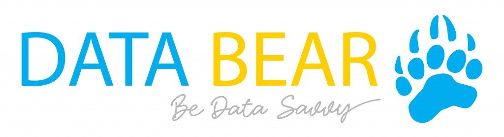 Data Bear Power BI Consultancy and Training
