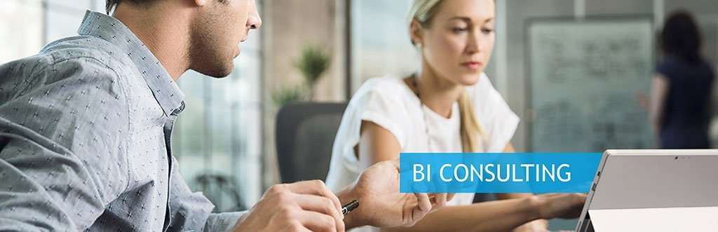 powerbi consulting